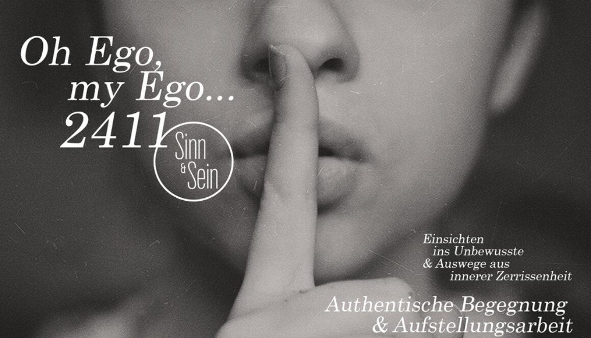 EgomyEgo2_web
